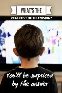 Real cost of television