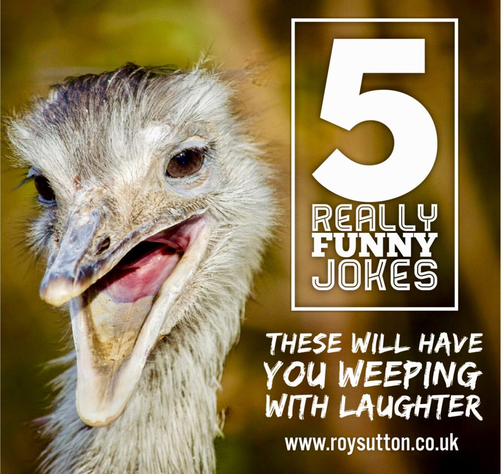 Humor Inspirational Quotes: 5 Really Funny Jokes That Will Have You Weeping With