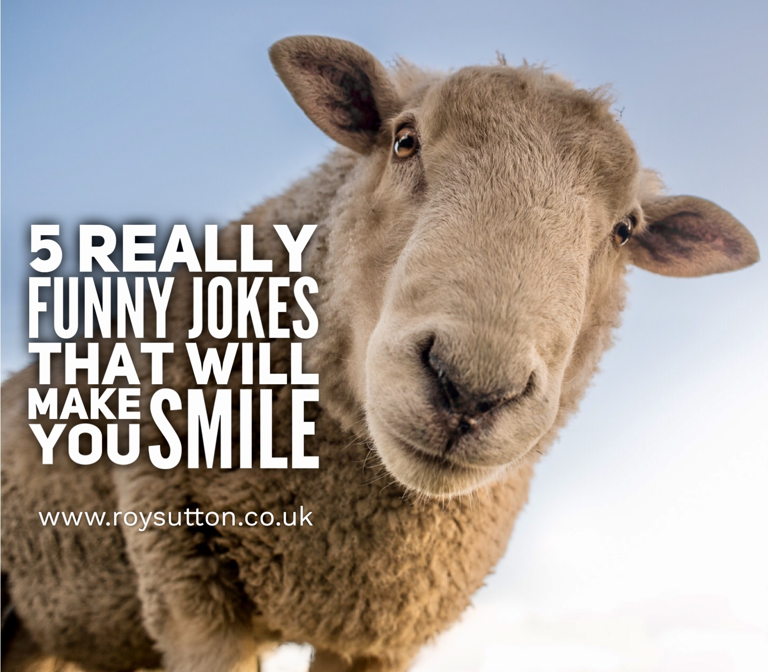 Humor Inspirational Quotes: 5 Really Funny Jokes That Will Make You Smile