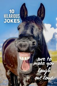 Hilarious jokes sure to make you laugh
