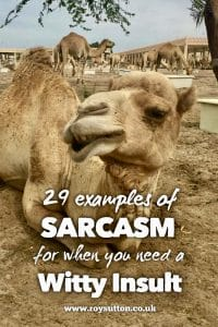 examples of sarcasm for when you need a witty insult