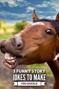 Funny Story Jokes