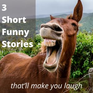 3 Short Funny Stories