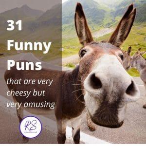 31 funny puns