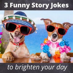 3 short funny story jokes